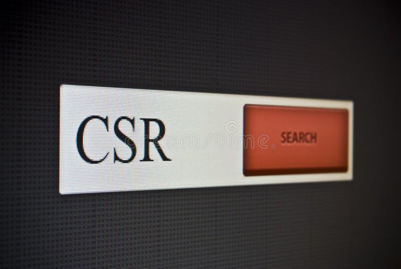 Internet-onderzoeksbar met uitdrukking CSR stock fotografie