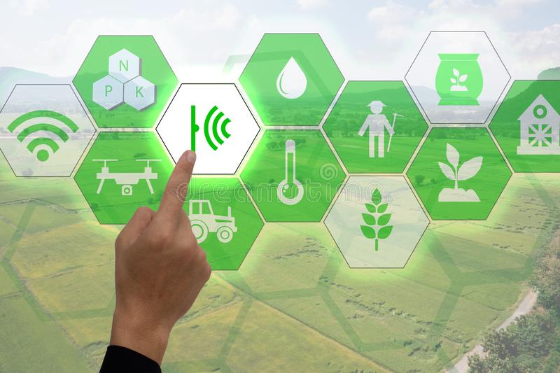 Internet of thingsagriculture concept, smart farming, industrial agriculture. Farmer point hand to use augmented reality technolog stock photos