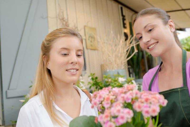 Interno de enseñanza de los jóvenes del florista imágenes de archivo libres de regalías
