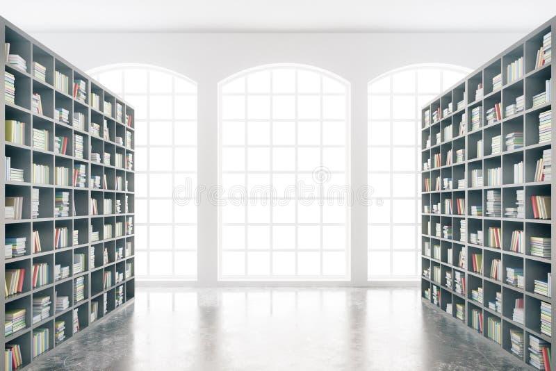 Interno delle biblioteche royalty illustrazione gratis