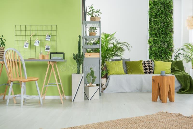 Interno domestico verde con il sofà fotografia stock libera da diritti