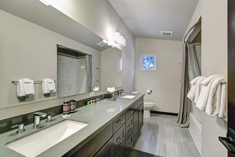 Interno matrice del bagno con vanità del doppio lavandino fotografia stock libera da diritti