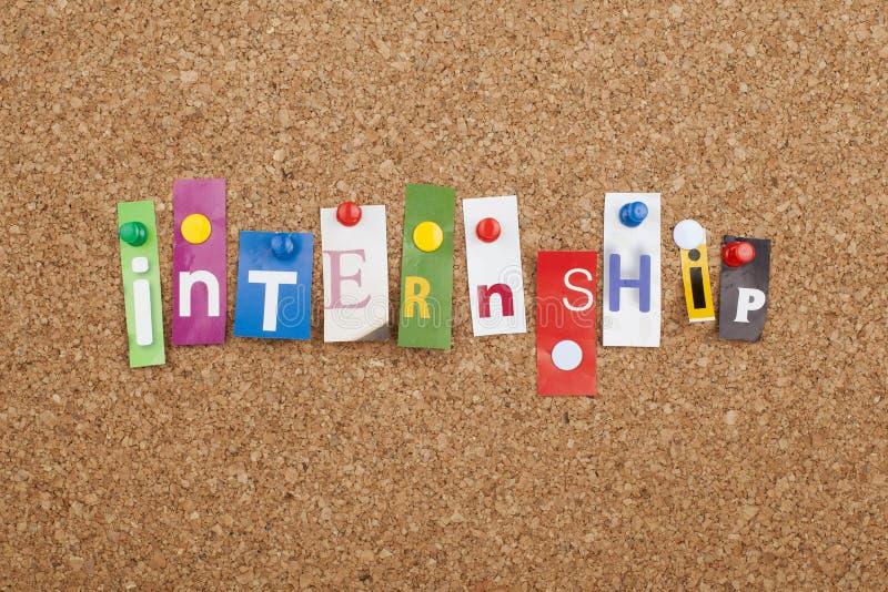 internship fotos de stock