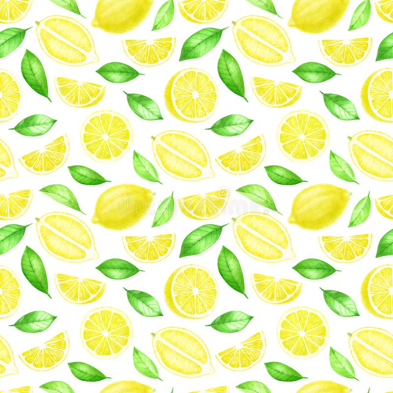 Intero e modello senza cuciture affettato di frutti freschi del limone Agrume con le foglie isolate su fondo bianco Mano dell'acq illustrazione di stock
