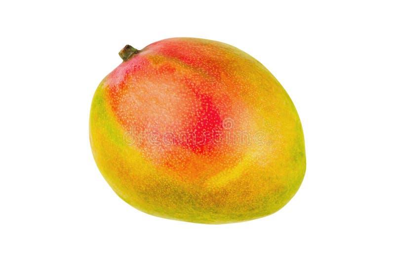 Intero mango maturo fresco isolato su fondo bianco Vista superiore fotografie stock libere da diritti