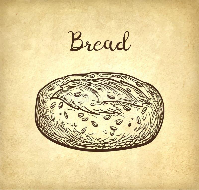 Intero pane del granulo illustrazione vettoriale
