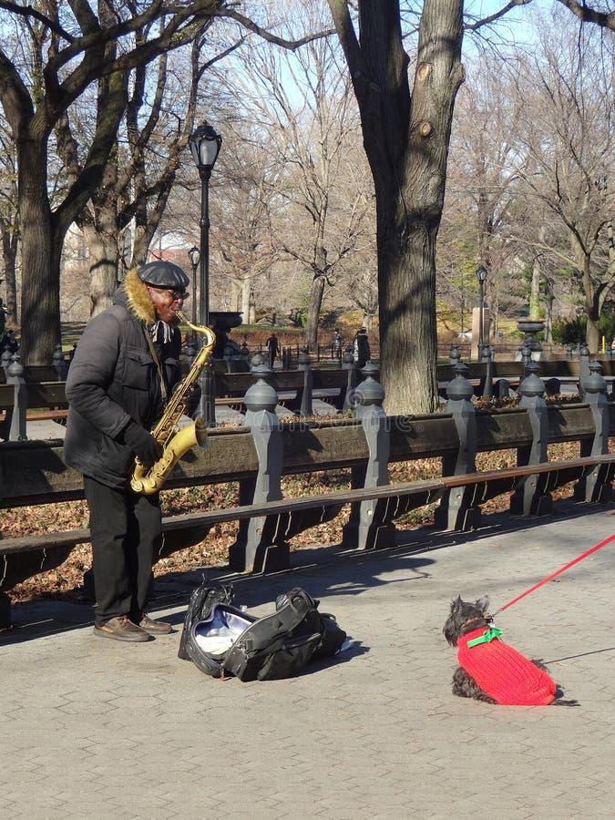 Interprète de rue dans le Central Park de New York City photos libres de droits