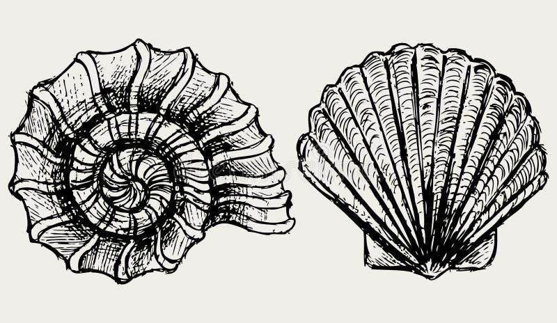 Interpréteur de commandes interactif d'escargot et de feston de mer illustration libre de droits