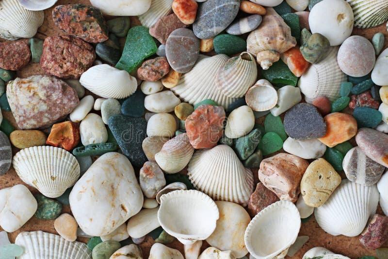 Interpréteurs de commandes interactifs et pierres de mer photos libres de droits