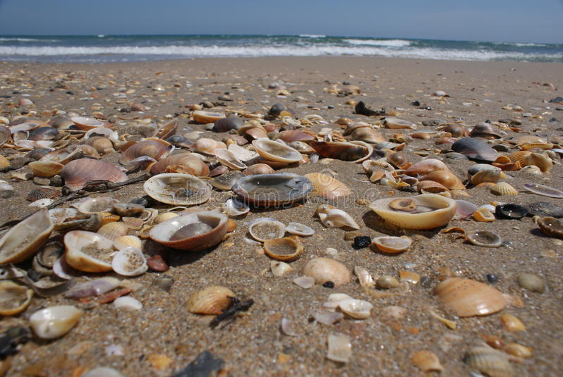 Interpréteurs de commandes interactifs sur la plage photos stock