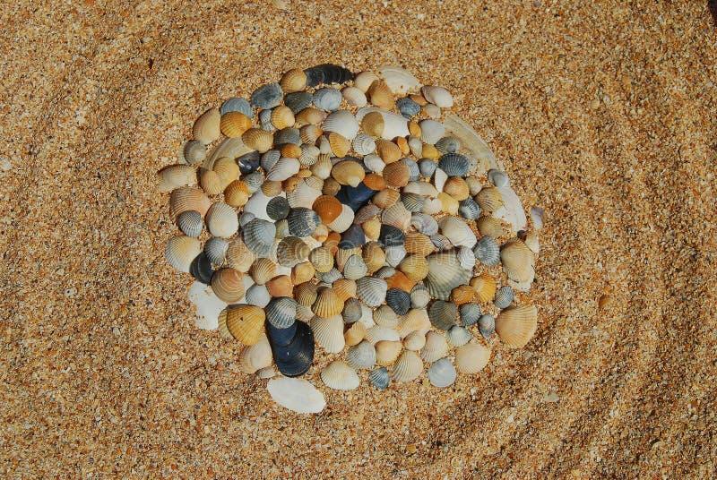 Interpr?teurs de commandes interactifs de mer sur le sable Fond de plage d'?t? images stock