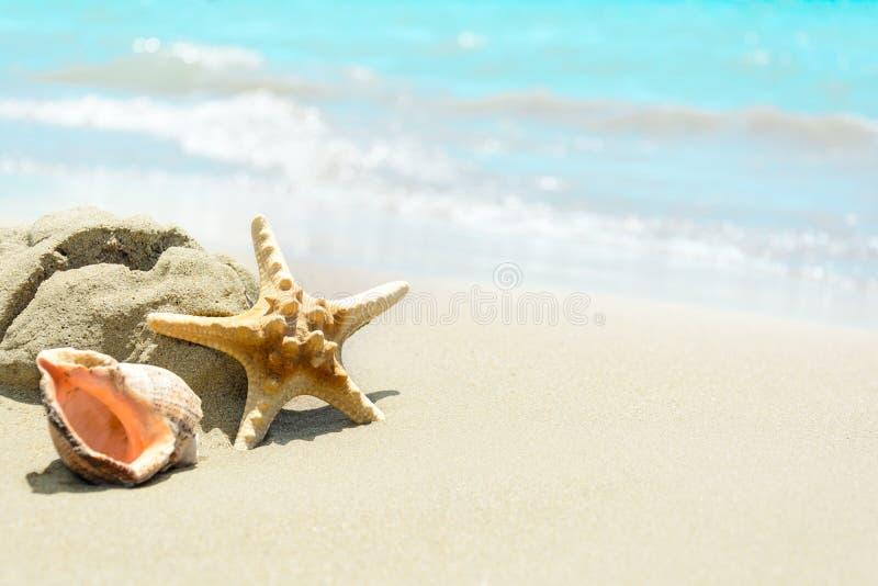 Interpr?teurs de commandes interactifs sur la plage sablonneuse Fond tropical Voyagez et d?tendez le concept photo libre de droits