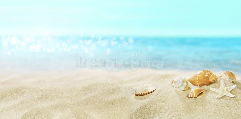 Interpr?teurs de commandes interactifs sur la plage sablonneuse ?t? photos libres de droits