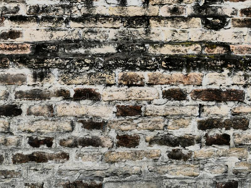 Interpretazione originale della struttura della parete fatta dei mattoni immagine stock