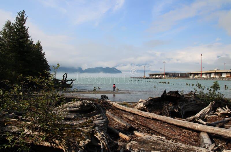 Interpretive slinga för Oceanfront i Squamish, British Columbia, Kanada royaltyfri fotografi