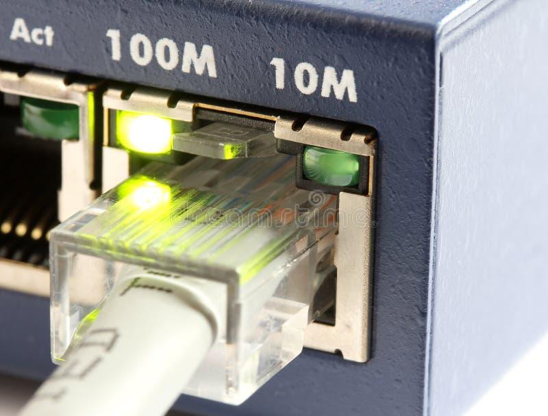 Interruptor de rede com cabo de Ethernet cinzento imagens de stock