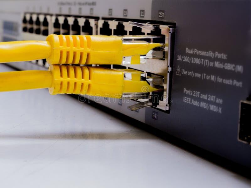Interruptor de rede e cabos ethernet, conceito do centro de dados ao commun imagens de stock royalty free