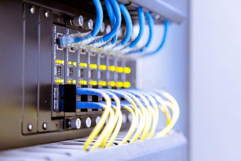 Interruptor de rede e cabos ethernet, conceito do centro de dados imagem de stock royalty free