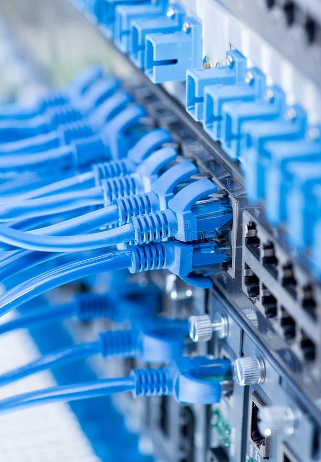 Interruptor de rede e cabos ethernet, conceito do centro de dados imagem de stock