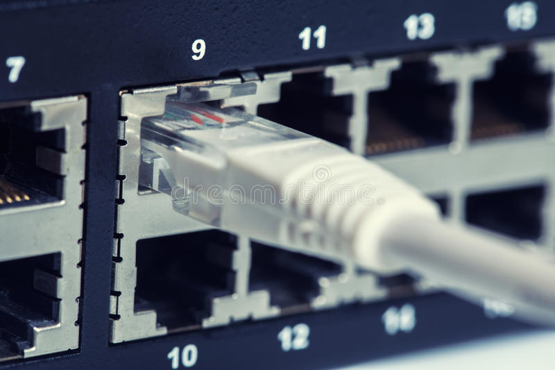Interruptor de rede e cabos ethernet de UTP fotos de stock