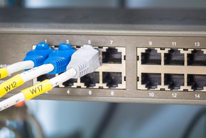 Interruptor e cabos ethernet de rede fotografia de stock royalty free