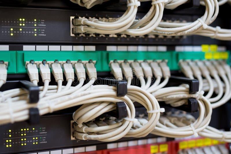 Interruptor e cabos ethernet de rede conectados imagem de stock royalty free