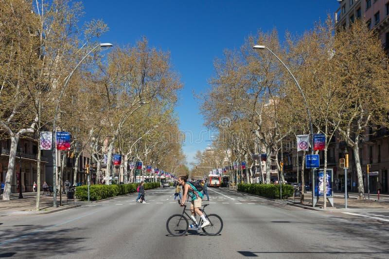 Interseção da estrada do cruzamento do ciclista Bicicleta como o transporte urbano em Barcelona imagens de stock