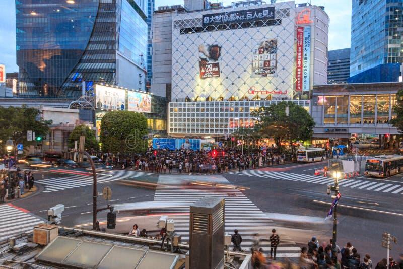 Intersection on Shibuya, Tokyo, Japan royalty free stock images