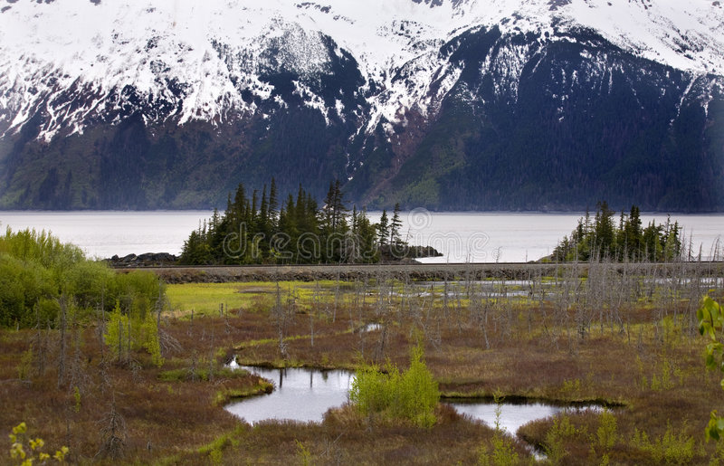 Intervallo di montagna della neve Anchorage Alaska fotografia stock libera da diritti