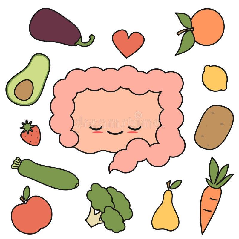 Intestin heureux et sain de bande dessinée mignonne avec l'illustration de vecteur de concept de fruits et légumes illustration libre de droits