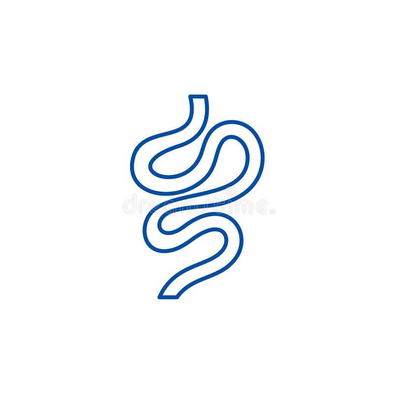 Intestines line icon concept. Intestines flat  vector symbol, sign, outline illustration. royalty free illustration