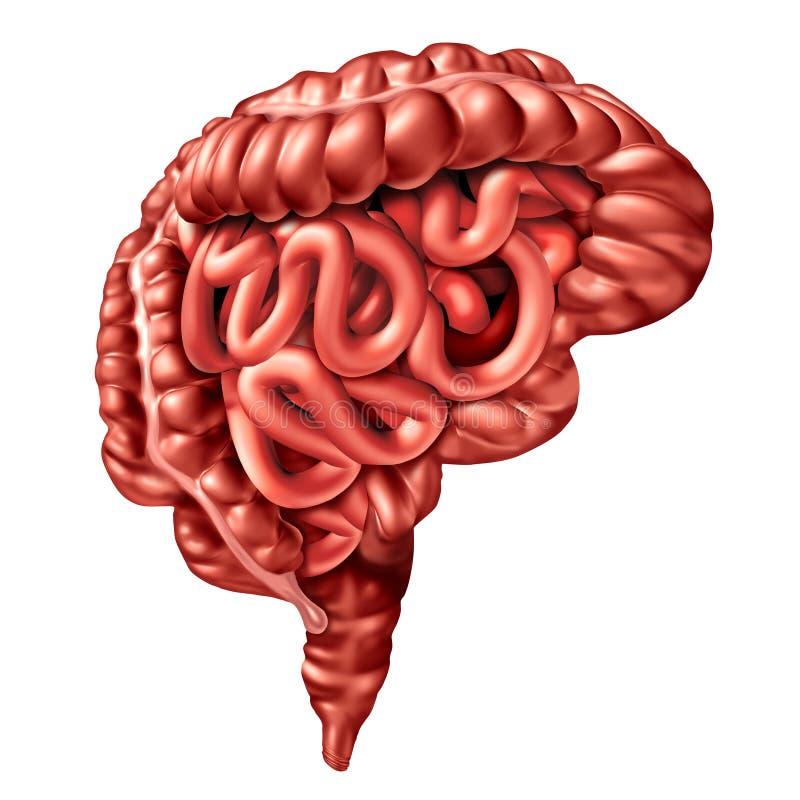 Intestino Brain Health And Psychology ilustração do vetor