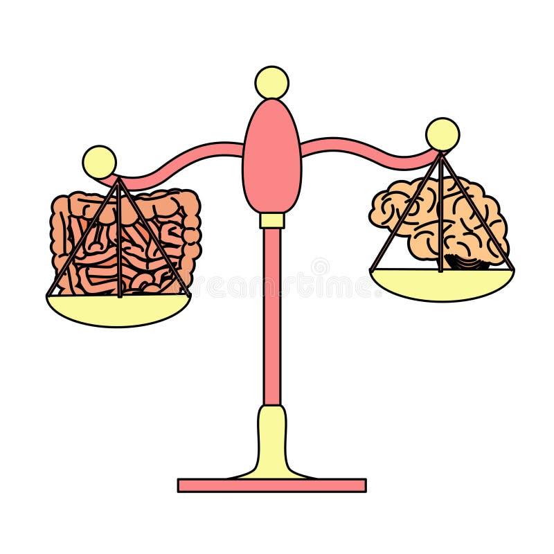 Intestino contra o conceito do cérebro ilustração do vetor