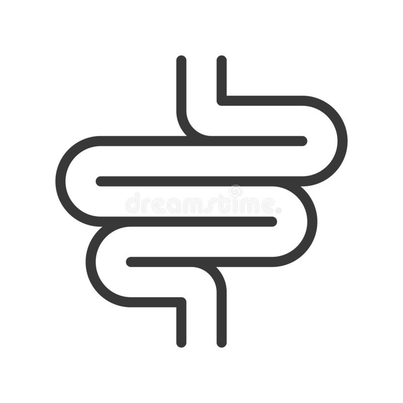 Intestino delgado, sistema del icono del ejemplo del vector del órgano stock de ilustración