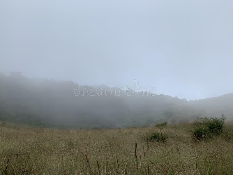 Inthanon fter opady deszczu fotografia stock