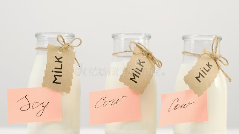 Intolerancia a la lactosa de la soja de vaca de la alternativa de la leche imagenes de archivo