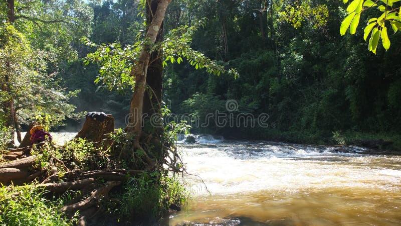 Intresse för Cambodja Mondulkiri landskap mycket för touris royaltyfri fotografi