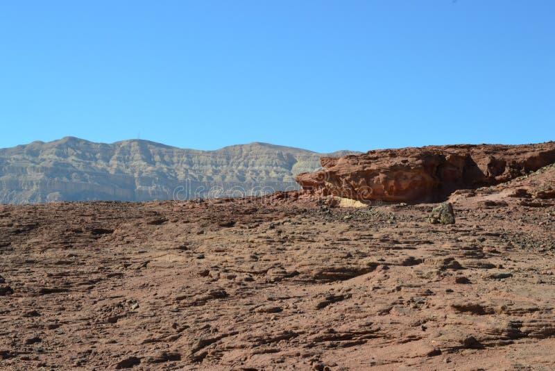 Intressera vagga bildande i Timna parkerar, den Negev öknen, vildmark i södra Israel, Eilat royaltyfria bilder