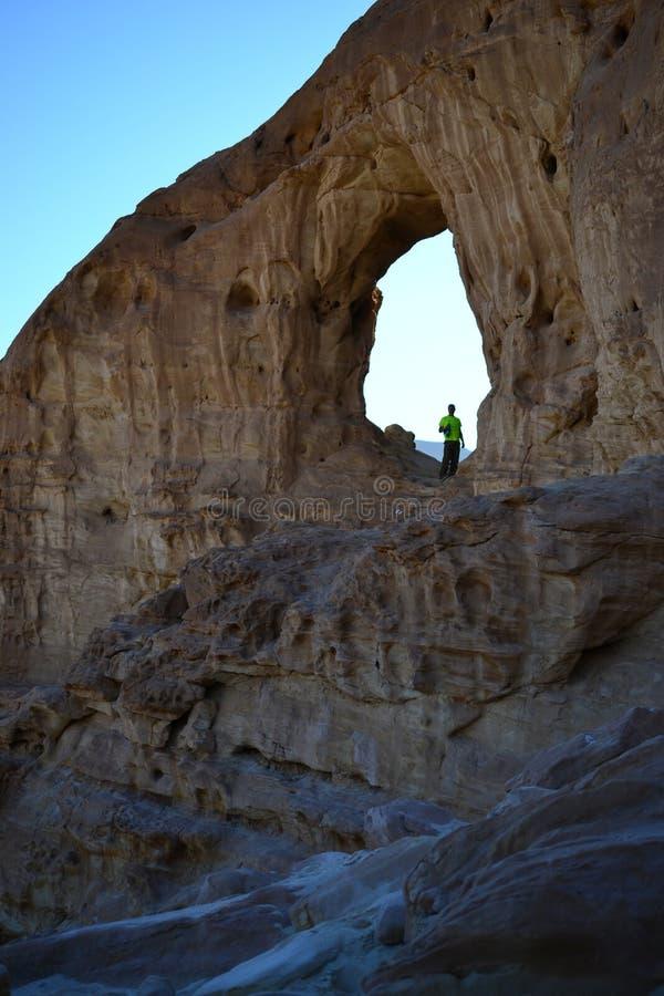 Intressera vagga bildande i Timna parkerar, den Negev öknen, vildmark i södra Israel, Eilat royaltyfria foton