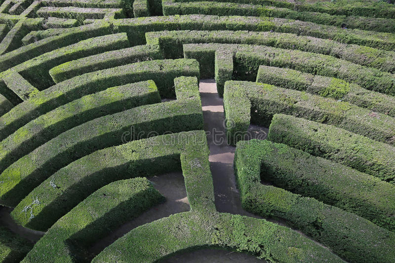 Intricate and complex maze of hedges. Aerial view of an intricate and complex maze of hedges royalty free stock image