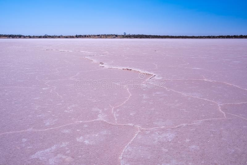 Intricate windblown salt patterns on pink lake. royalty free stock image