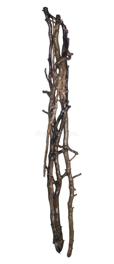 Intrico di legno immagine stock