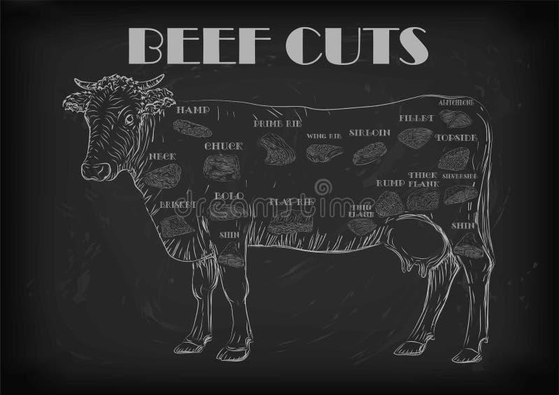 Intrig s för infographics för delar för snitt för snitt för kadaver för tjur för nötköttko hel royaltyfri illustrationer