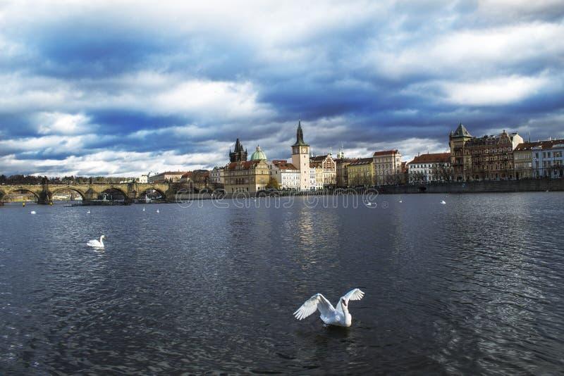Intryck från Prague - ett storartat ställe royaltyfria bilder