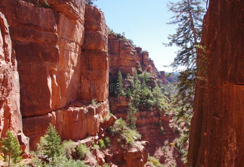 Intymny sceniczny widok wśrodku Uroczystego jaru parka narodowego, Arizona zdjęcie stock