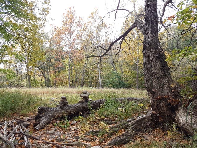 Inukshuk i skogen fotografering för bildbyråer