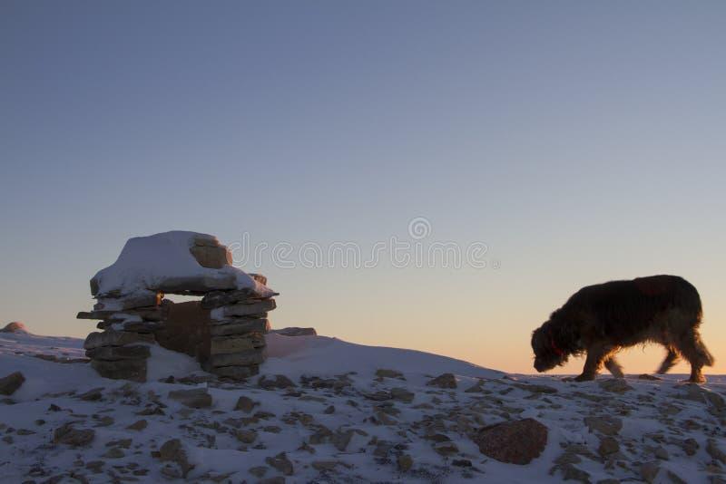 Inuksukoriëntatiepunt in sneeuw met hond in de scène wordt behandeld op een heuvel dichtbij de gemeenschap van de Baai die van Ca stock foto's