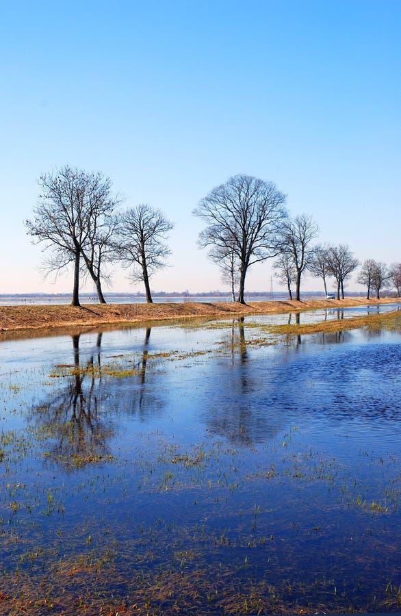 Inundação da mola imagens de stock