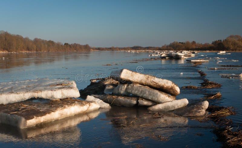 Inundação da mola no rio de Lielupe fotos de stock royalty free
