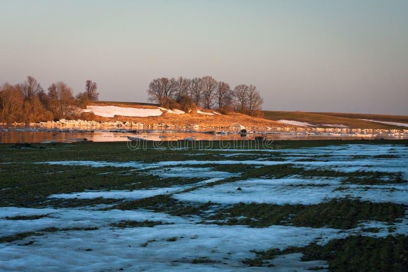 Inundação da mola no rio de Lielupe foto de stock